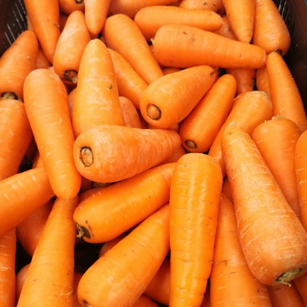 Zanahoria – Los zumos de zanahoria son refrescantes, saludables (altos en vitaminas, especialmente buenos para la vista), nos ayudan a perder peso y además están riquísimos.
